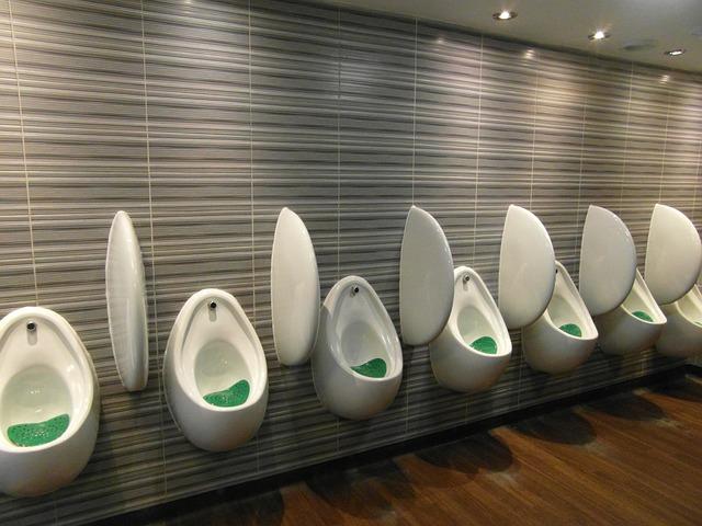 urinal-1666092_640